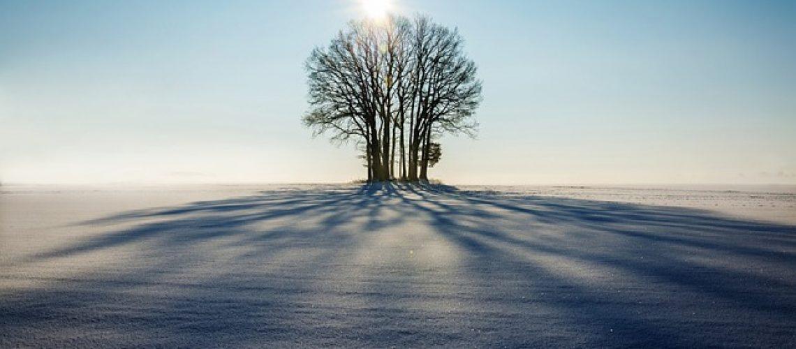 winter-1965902_640